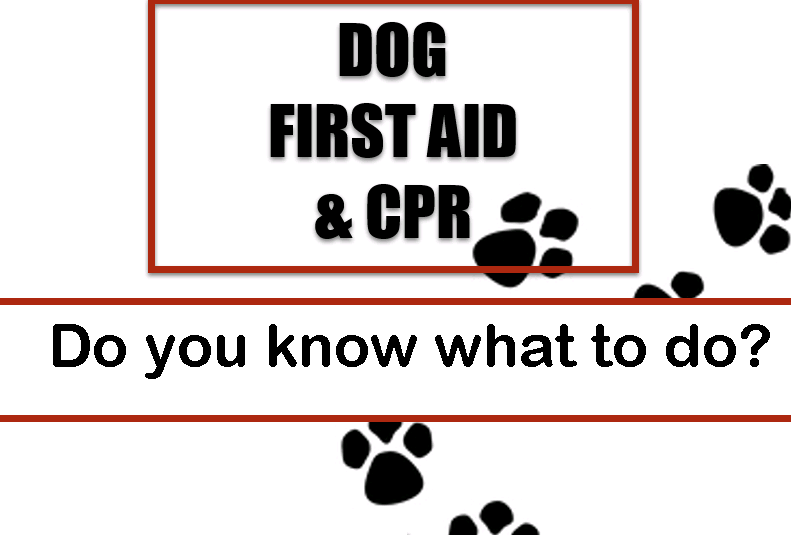 Cpr Classes Palm Desert Resuscitation Education